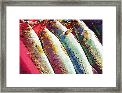 Catch Of The Day Framed Print by Margie Middleton