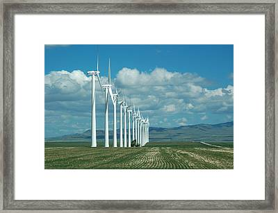 Catch The Wind Framed Print by Clay and Gill Ross