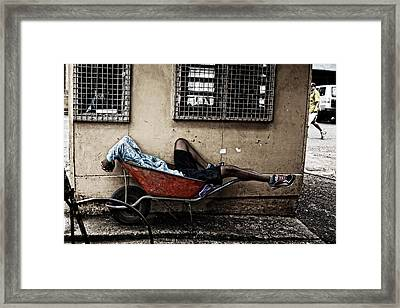 Catching A Few Framed Print by JM Photography