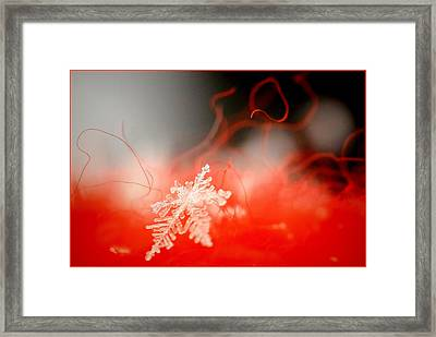 Catching A Snowflake Framed Print