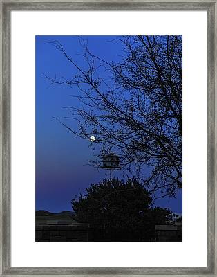 Catching Moonlight Framed Print