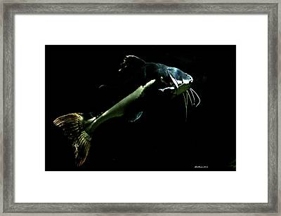 Catfish Are Jumpin Framed Print by Dick Botkin