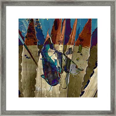 Catfish In The Desert Framed Print