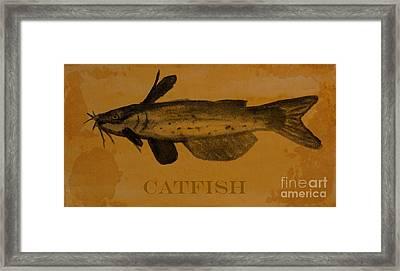 Catfish Plaque Framed Print by R Kyllo
