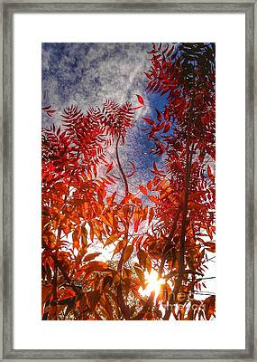 Framed Print featuring the photograph Catharsis by CML Brown