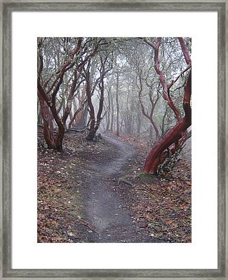 Cathedral Hills Serenity Framed Print by Marie Neder