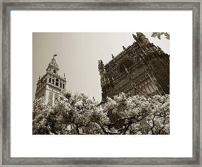 Cathedral Of Seville Framed Print
