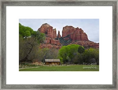 Cathedral Rock V Framed Print by Dave Gordon