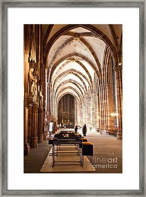 Cathedrale Notre Dame De Strasbourg France Framed Print