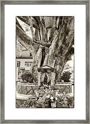 Catholic Shrine - Our Lady Of Guadalupe, Mexico - Travel Photography By David Perry Lawrence Framed Print by David Perry Lawrence