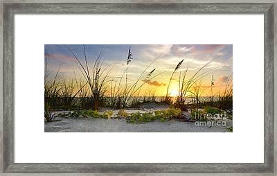 Cativa Beach Framed Print by Jon Neidert