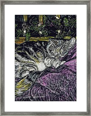 Catnap Framed Print by Robert Goudreau