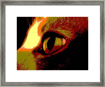 Cat's Eye Abstract  Framed Print by Ann Powell