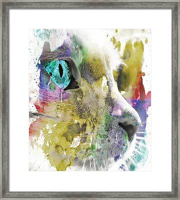 Cat's Eye Abstract Framed Print