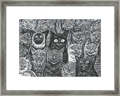 Framed Print featuring the mixed media Cats Eyes by Giovanni Caputo