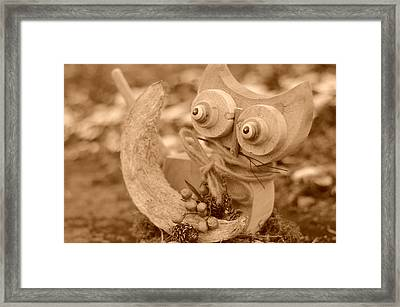 Cats Eyes Framed Print by Miguel Winterpacht