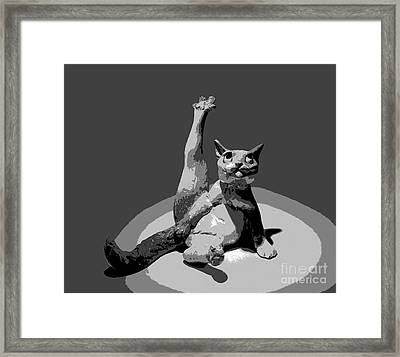 Cats... Framed Print
