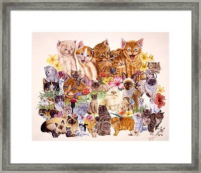Cats Framed Print by John YATO