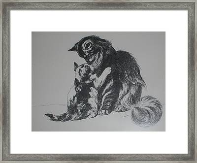 Cats - Mother With Baby Framed Print