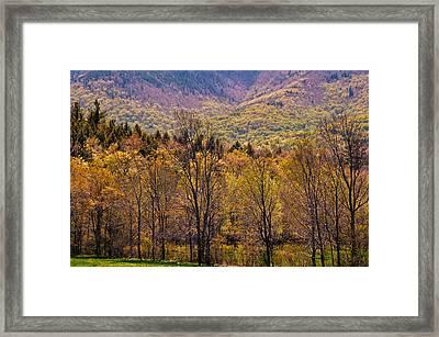 Catskill Color Framed Print