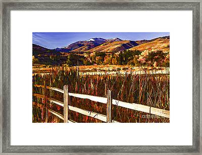 Cattails And Color-2 Framed Print by Nancy Marie Ricketts