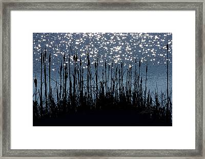 Cattails And Sparkle Framed Print