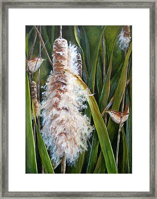 Cattails And Wrens Framed Print