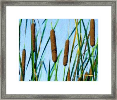 Cattails Framed Print by Tom Mc Nemar