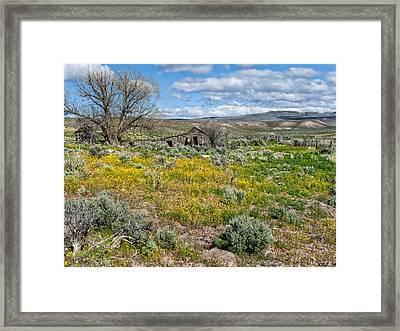 Cattle Camp Framed Print by Kathleen Bishop