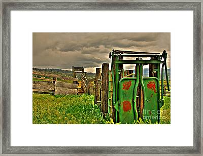Cattle Chute Framed Print