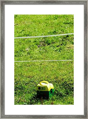 Cattle Electric Fence With Power Source Framed Print