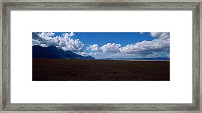 Cattle Pasture, Highway N7 From Cape Framed Print by Panoramic Images