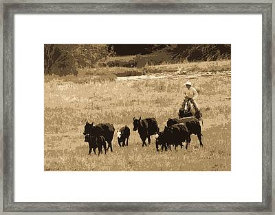 Cattle Round Up Sepia Framed Print