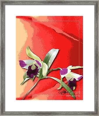 Cattleya Triage Dafoi Art 2 Of 3  Framed Print by Ruth  Benoit