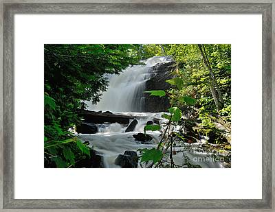 Cattyman Falls Framed Print by Larry Ricker