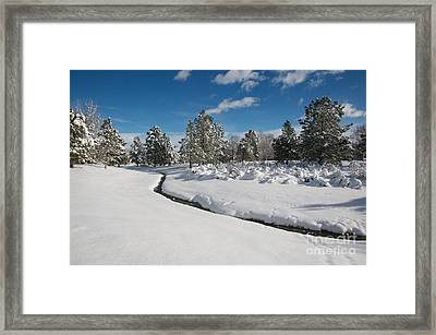 Framed Print featuring the photograph Caughlin Creek Snowfall by Vinnie Oakes