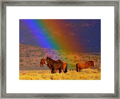 Caught In A Rainbow  Framed Print by Jeanne  Bencich-Nations