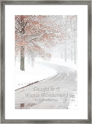 Caught In A Winter Wonderland Framed Print