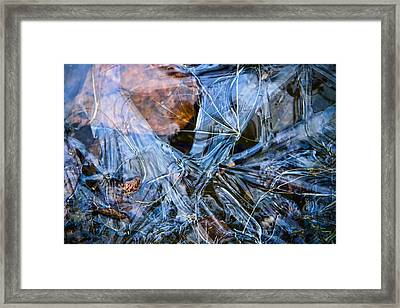 Caught In Ice Framed Print