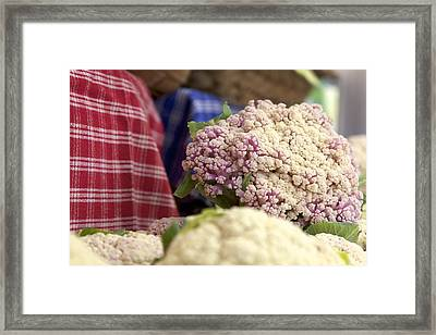 Cauliflower Framed Print by Terry Horstman