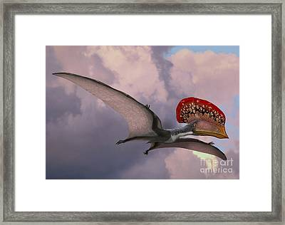 Caupedactylus Ybaka, An Extinct Framed Print by Sergey Krasovskiy