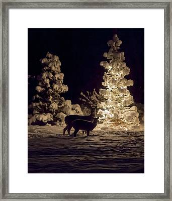 Cautious Framed Print by Aaron Aldrich
