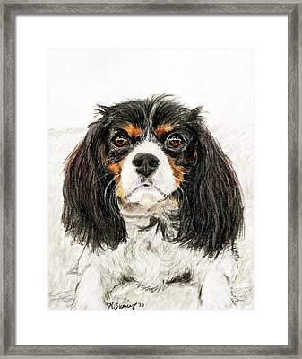 Cavalier King Charles Spaniel Painting Framed Print