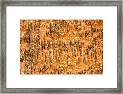 Cave Formation 5 Framed Print by T C Brown