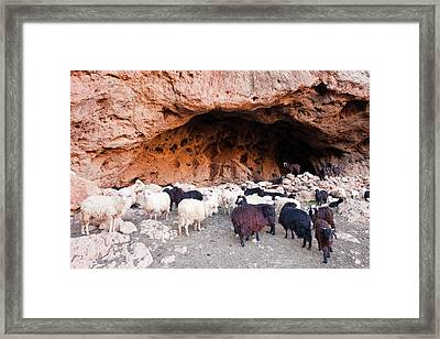 Cave Used As A Nightime Shelter Framed Print by Ashley Cooper