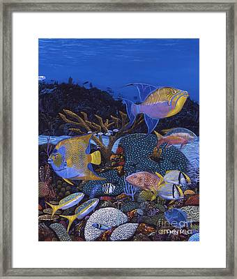 Cayman Reef 1 Re0021 Framed Print by Carey Chen