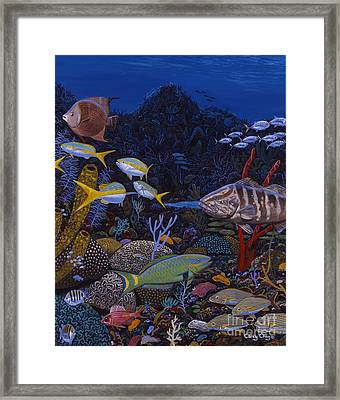 Cayman Reef Re0022 Framed Print