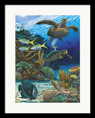 Eagle Ray Framed Prints