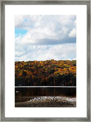 Framed Print featuring the photograph Cayuga Lake In Colorful Fall Ithaca New York  by Paul Ge
