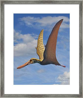 Cearadactylus Atrox, A Large Pterosaur Framed Print